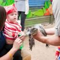 Bump Club Presents the Little Zoo Boo – GIVEAWAY