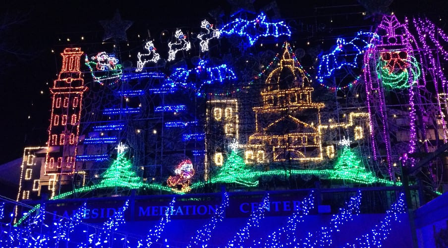 Specialty Christmas Lights